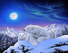 polar backgrounds polar bears hd wallpaper background image 1920x1500