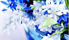 Gambar Wallpaper Bunga Cantik Indah Caption Instagram