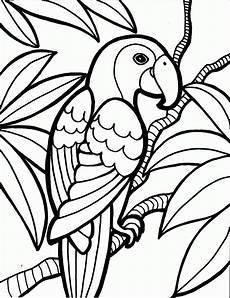 bird coloring pages to and print for free