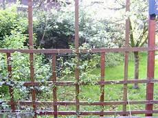 Gartenabtrennung Zum Nachbarn - reihenhausgarten trennung zum nachbarn mein sch 246 ner