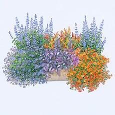 balkonkasten set feurige mischung pack 6 pflanzen