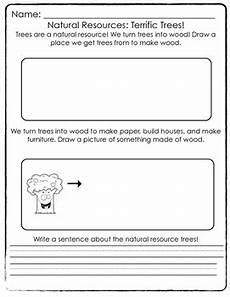 natural resources trees worksheet by thefirstgradelife tpt