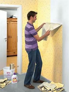 Verarbeitung Tapeten Wand Decke Innenausbau