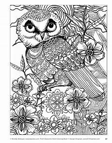 awesome owls coloring book by fox chapel publishing issuu pattern owls coloring books