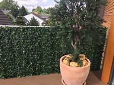 Wetterfeste Kunstpflanzen Bellaplanta Individuelle