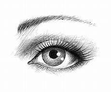 dessin noir et blanc l oeil humain illustration