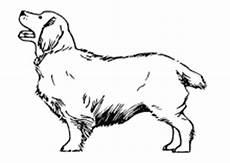 Malvorlagen Tiere Hunde Ausmalbilder Tiere Hunde X13 Ein Bild Zeichnen