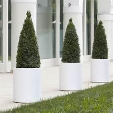 vasi da fiori per esterno vasi da esterno offerta promozionale sconto 10