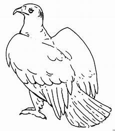 Malvorlagen Kinder Adler Sitzender Adler Ausmalbild Malvorlage Tiere