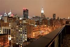 jungle city new york