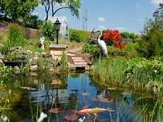 Gartenteich Bauen Fisch Und Pflanze Bis Zur Pflege