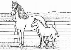 ausmalbilder zum ausdrucken pferde ausmalbilder