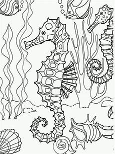 underwater animals coloring pages 17176 underwater seahorse coloring page adultcp beachy 18546 animal coloring pages