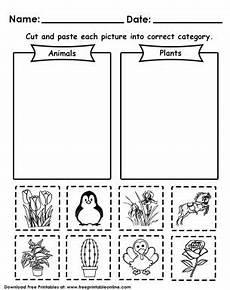 plants and animal needs worksheets 13591 56 best kindergarden worksheets images on