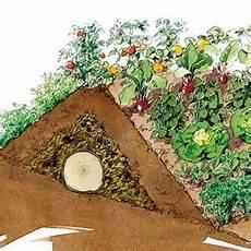 faire une butte permaculture comment cr 233 er une butte de permaculture au potager hugelkultur potager potager jardin