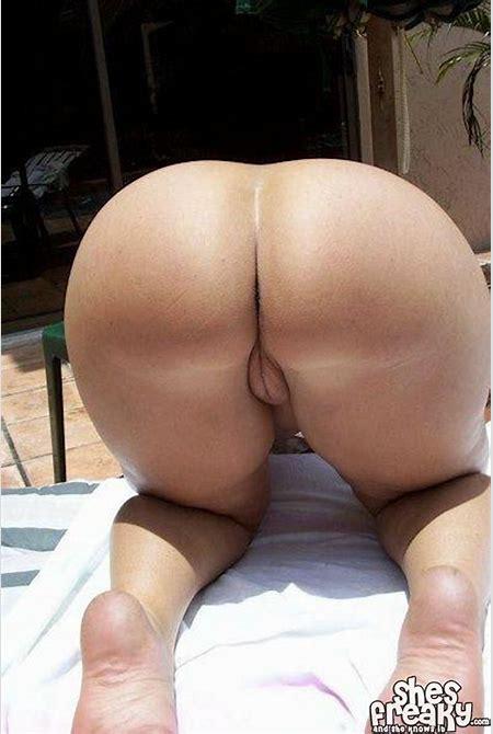 Big Round Ass Pawgs - Hot Naked Babes