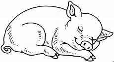 Lustige Schweine Ausmalbilder Schlafendes Schwein Ausmalbild Malvorlage Tiere