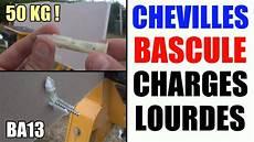 Cheville Molly Charge Cheville A Bascule Charges Lourdes Placo Ba13 Ba16 Ba10