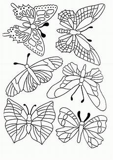 Malvorlagen Schmetterling Jung Schmetterling Malvorlagen Malvorlage Schmetterling