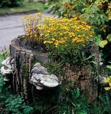 Baumstumpf Im Garten Verschönern - 90 deko ideen zum selbermachen f 252 r sommerliche stimmung im