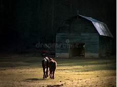 deux chevaux en bois deux chevaux marchant vers la grange photo stock image