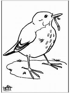 malvorlage vogel im nest kleurplaat vogel in nest malvorlage vogel mit nest