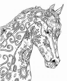 443 best coloring horses images on