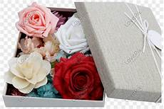 Terkeren 12 Gambar Bunga Di Hari Koleksi Bunga Hd