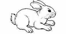 Malvorlagen Kaninchen Kostenlos Ausmalbilder Kostenlos Druckbare Malvorlagen Vol 7521