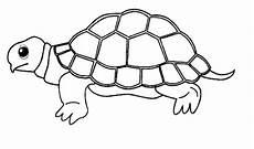 Mewarnai Gambar Binatang Hewan Dan Tumbuhan Untuk Anak Tk