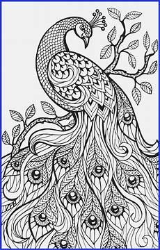 printable watercolor pages at getdrawings free