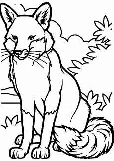 Malvorlagen Tiere Fuchs Fuechse Ausmalbilder Ausmalbilder Fuechse Malvorlagen
