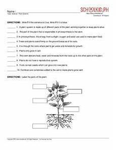 discovering plants worksheets grade 5 13532 plant systems worksheet for 4th 5th grade lesson planet