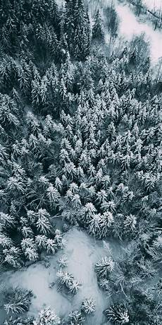 iphone wallpaper winter trees aerial view winter pine trees 1080x2160