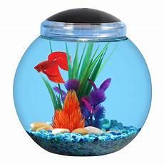aqua culture 1 gallon globe fish bowl with led light walmart com