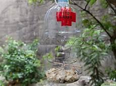 comment fabriquer une mangeoire 224 oiseaux 224 partir d une