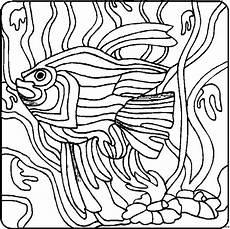 Ausmalbilder Malvorlagen Algen Fisch Mit Algen Ausmalbild Malvorlage Tiere