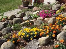 giardini di montagna il giardino roccioso