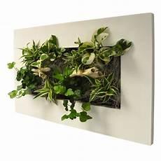 cadre mural vegetal cadre vegetal naturel le du potager d anitta