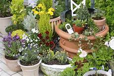 5 steps for a rainproof container garden the english garden