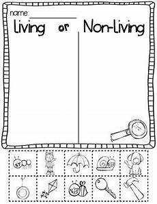 science activities for kindergarten living and nonliving things investigation