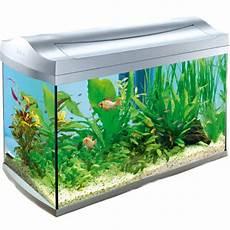 tetra aqua aquarium 60lt on sale