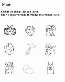 free printable worksheets about the five senses 12629 five sense worksheet new 418 worksheets on five senses for grade 1