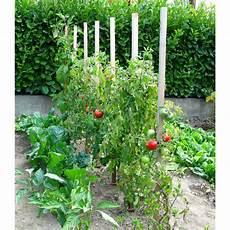 Utilisez Le Piquet Tomate Bois 150 Cm De Jardin Et Saisons