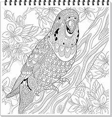 Ausmalbilder Zum Drucken Tier Mandalas Papagei Mandala Ausmalbilder Zum Ausdrucken Parrot Mandala