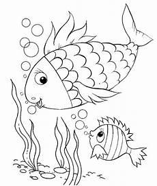 ausmalbilder malvorlagen fisch mit schuppen kostenlos