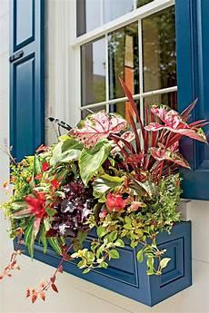design fiori una finestra in fiori ecco 20 esempi sapranno
