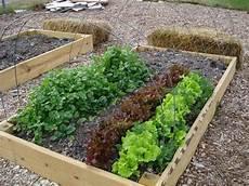 fare l orto in giardino orto giardinaggio tutto sull orto