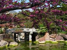 a love of japanese gardens confero dezso