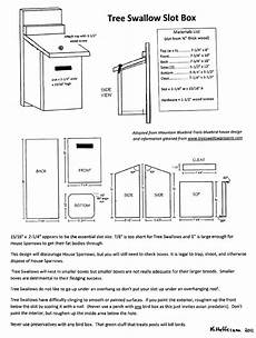 swallow bird house plans violet green swallow house plans